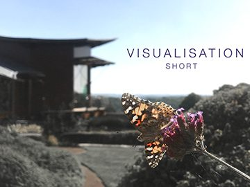 Visualisation (Short)